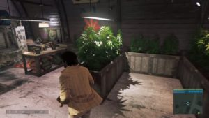 Weed-Mafia3